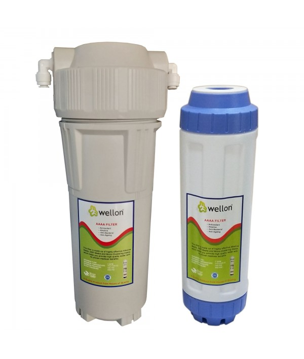 WELLON Anti-Oxidant Alkaline Filter for Whole House Water Filtration System (10 in)