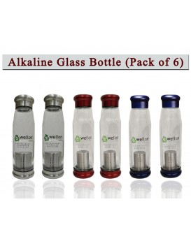WELLON ANTIOXIDANT Alkaline Glass Water Bottle BPA Free & HYGIENIC and Portable Carry Case – 650ml (Pack of 6)