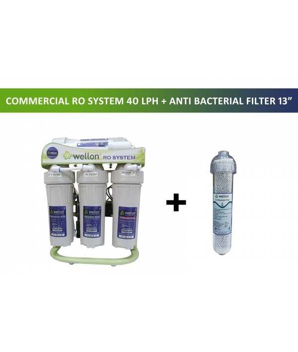 Wellon 40 LPH Domestic or Commercial RO Plant with 13 Inch Anti Bacterial Filter TDS Controller Water Purifier