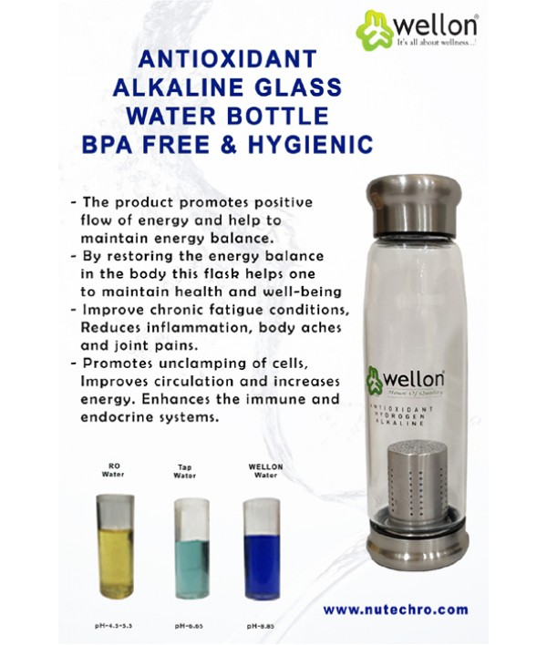 ANTIOXIDANT Alkaline Glass Water Bottle BPA Free & HYGIENIC 650 ml (Siver)