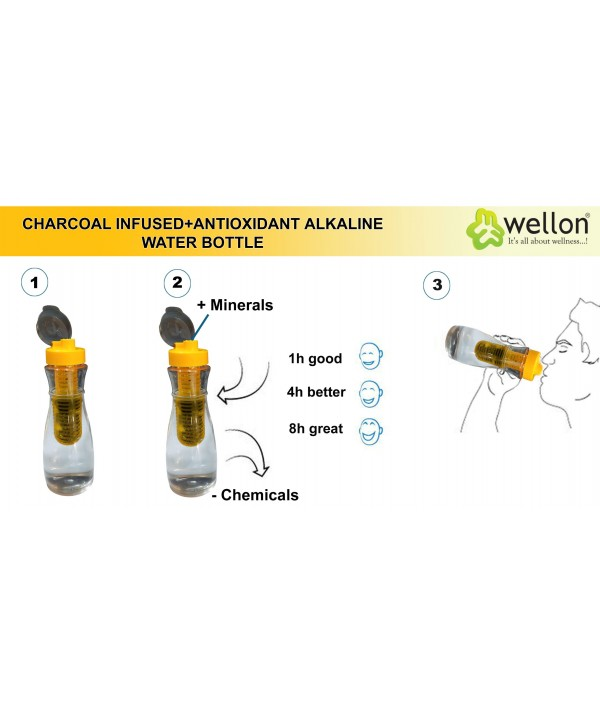 Wellon Antioxidant Hydrogen Alkaline Water Filter Bottle/Pitcher/Jug