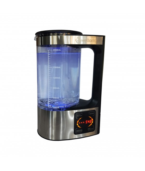 WELLON High Quality Granular Activated Carbon Filter for Improve Taste and Odor for All Types of Water Purifiers.